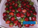 Strawberries are available in Baguio City only (Northern area). Thanks to those farmers!